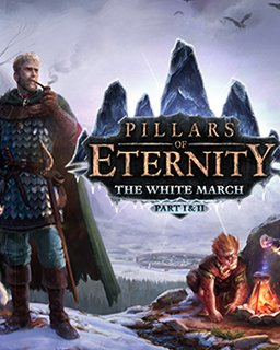 Pillars of Eternity  The White March Part 1 krabice