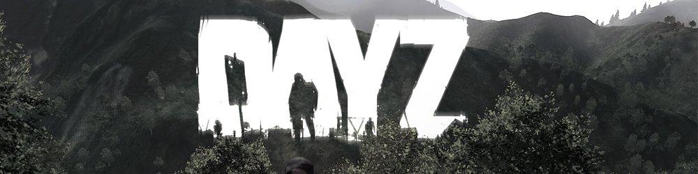 DayZ banner