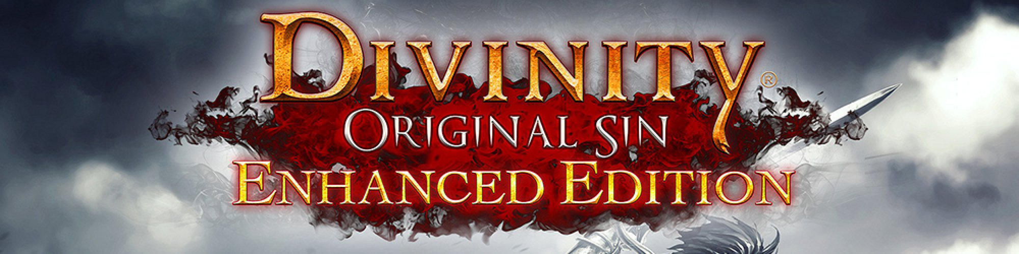 Divinity Original Sin Enhanced Edition banner