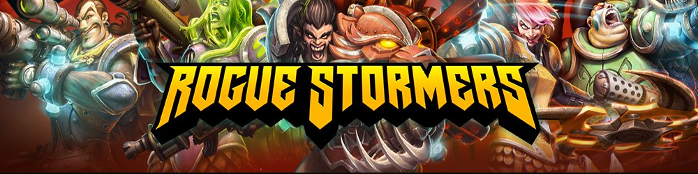 Rogue Stormers banner