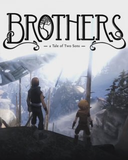 Brothers A Tale of Two Sons krabice