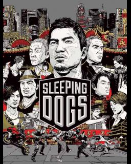 Sleeping Dogs krabice