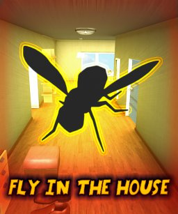 Fly In The House krabice