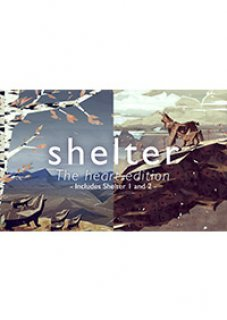 Shelter The Heart Edition