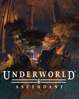 Underworld Ascendant krabice