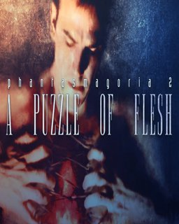 Phantasmagoria 2 A Puzzle of Flesh krabice