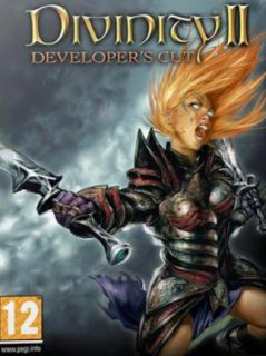 Divinity II Developer's Cut