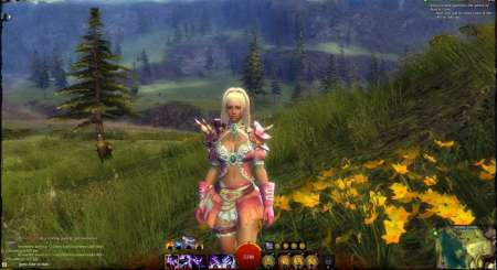 Guild Wars 2 Heroic Edition 3215