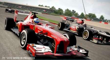 F1 2013 1