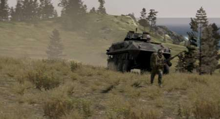 Arma II Complete Collection, Arma 2 2