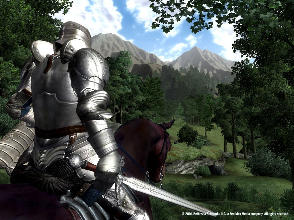 The Elder Scrolls IV Oblivion Game of the Year Edition 28