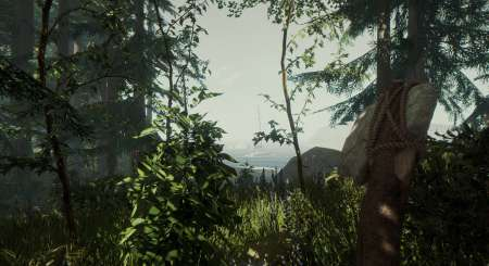 The Forest 4