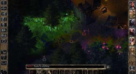 Baldurs Gate 2 Enhanced Edition 4