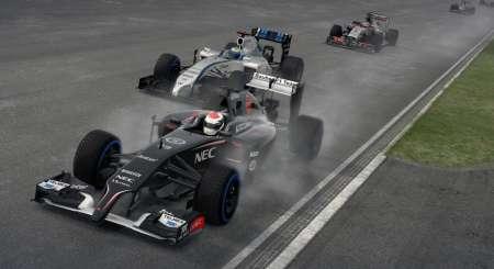 F1 2014 10
