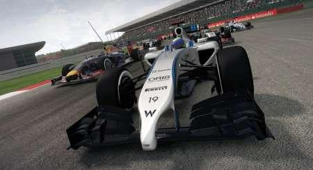 F1 2014 5