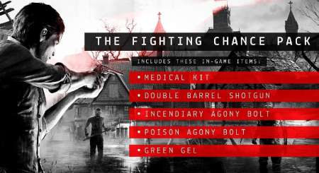 The Evil Within The Fighting Chance Pack 2