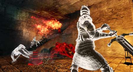 Dark Souls II Scholar of the First Sin 14