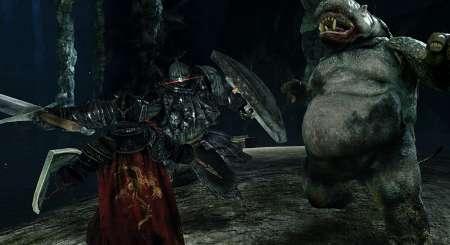 Dark Souls II Scholar of the First Sin 7