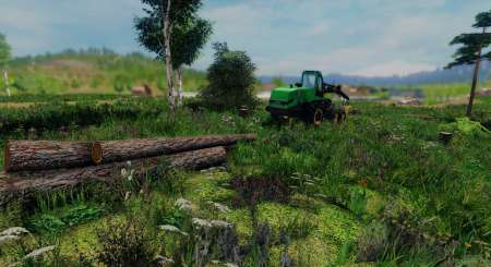 Professional Lumberjack 2015 17