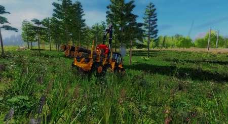 Professional Lumberjack 2015 18