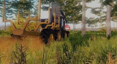 Professional Lumberjack 2015 5