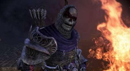 Dragon Age Origins Awakening 5