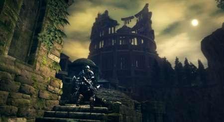 Dark Souls Prepare To Die Edition 14