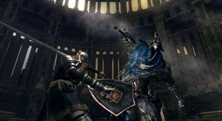 Dark Souls Prepare To Die Edition 8