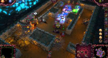 Dungeons 2 8