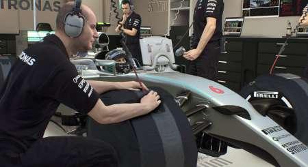 F1 2015 11