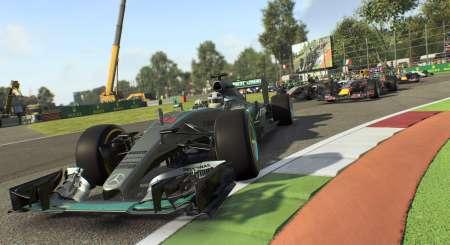 F1 2015 13