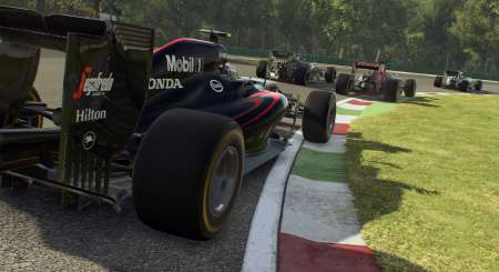 F1 2015 20