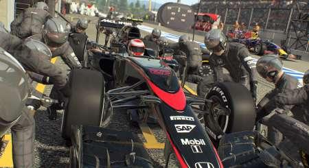 F1 2015 21