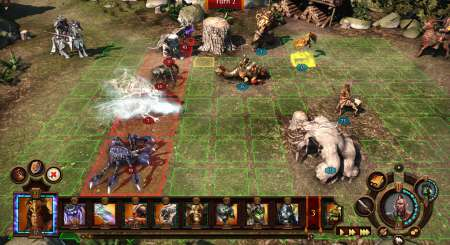 Might and Magic Heroes V 6