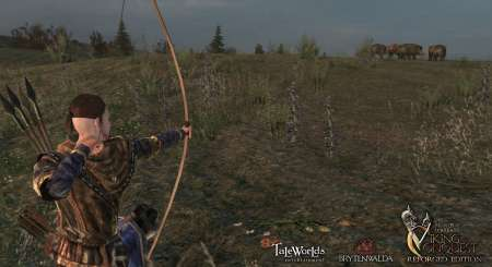 Mount and Blade Warband Viking Conquest 2