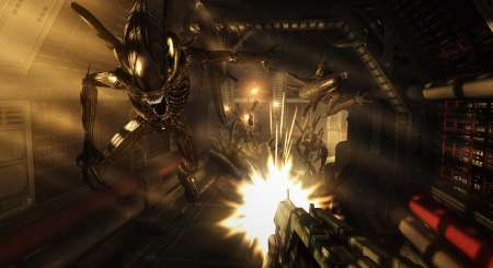 Aliens Vs Predator Collection 3