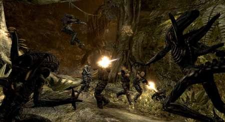 Aliens Vs Predator Collection 8