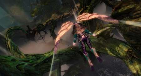 Guild Wars 2 Heart of Thorns 5