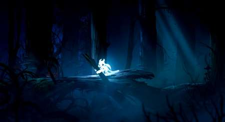 Ori and the Blind Forest Definitive Edition 1