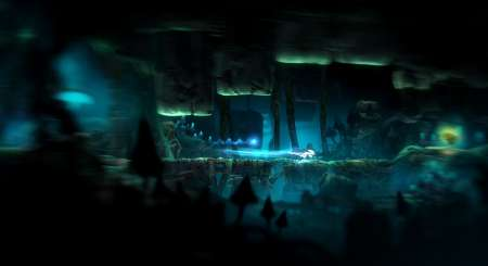 Ori and the Blind Forest Definitive Edition 2