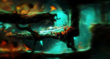 Ori and the Blind Forest Definitive Edition 3