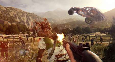 Dying Light The Following 7