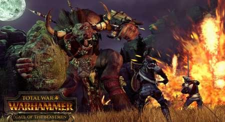 Total War WARHAMMER Call of the Beastmen DLC 1