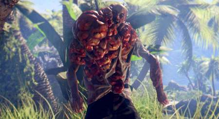 Dead Island Definitive Collection 5