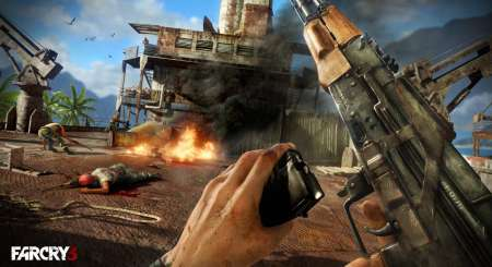 Far Cry 3 8
