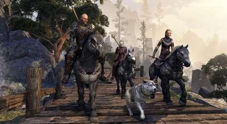 The Elder Scrolls Online Gold Edition 3