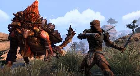 The Elder Scrolls Online Gold Edition 4