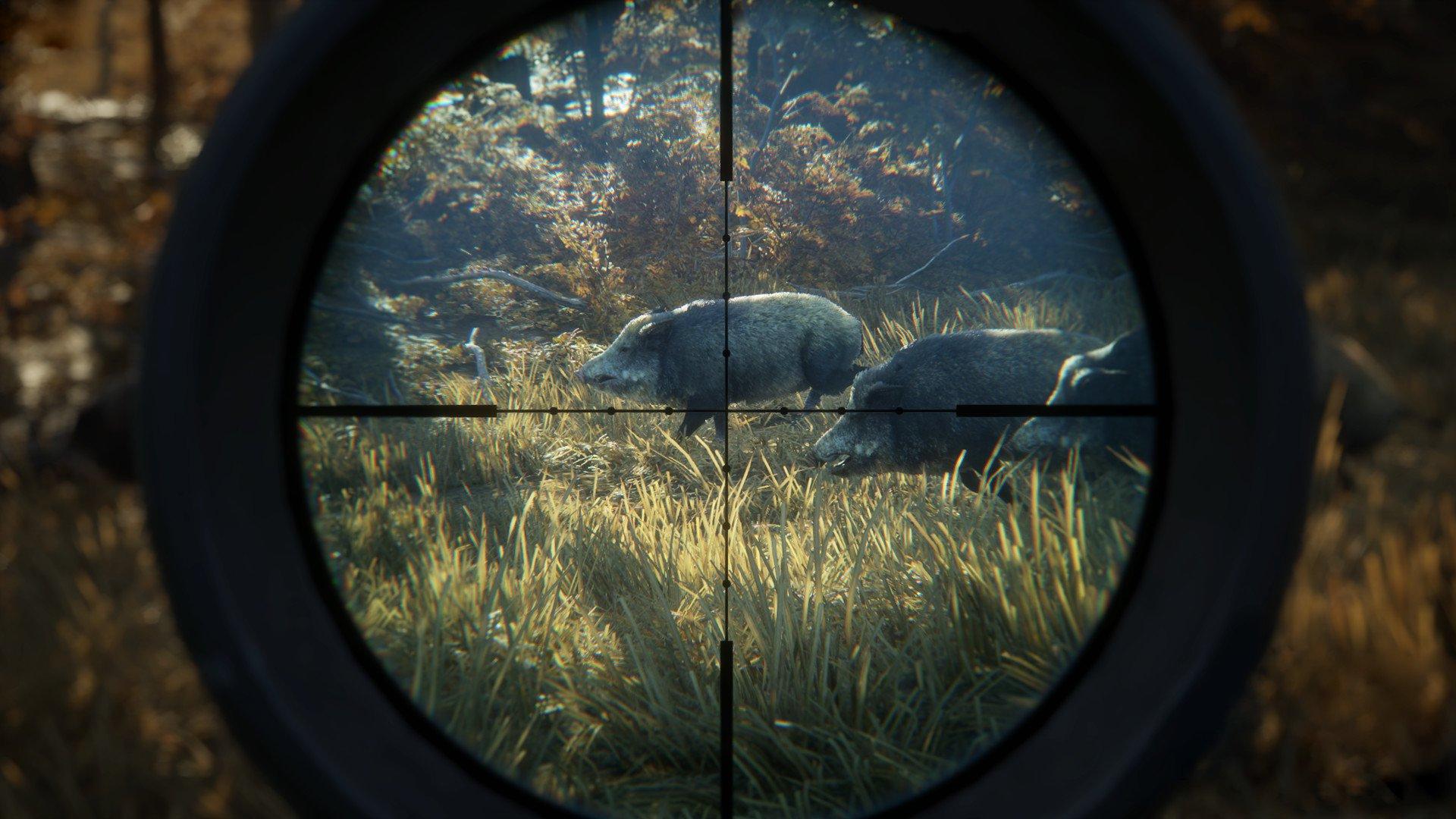 theHunter Call of the Wild 17