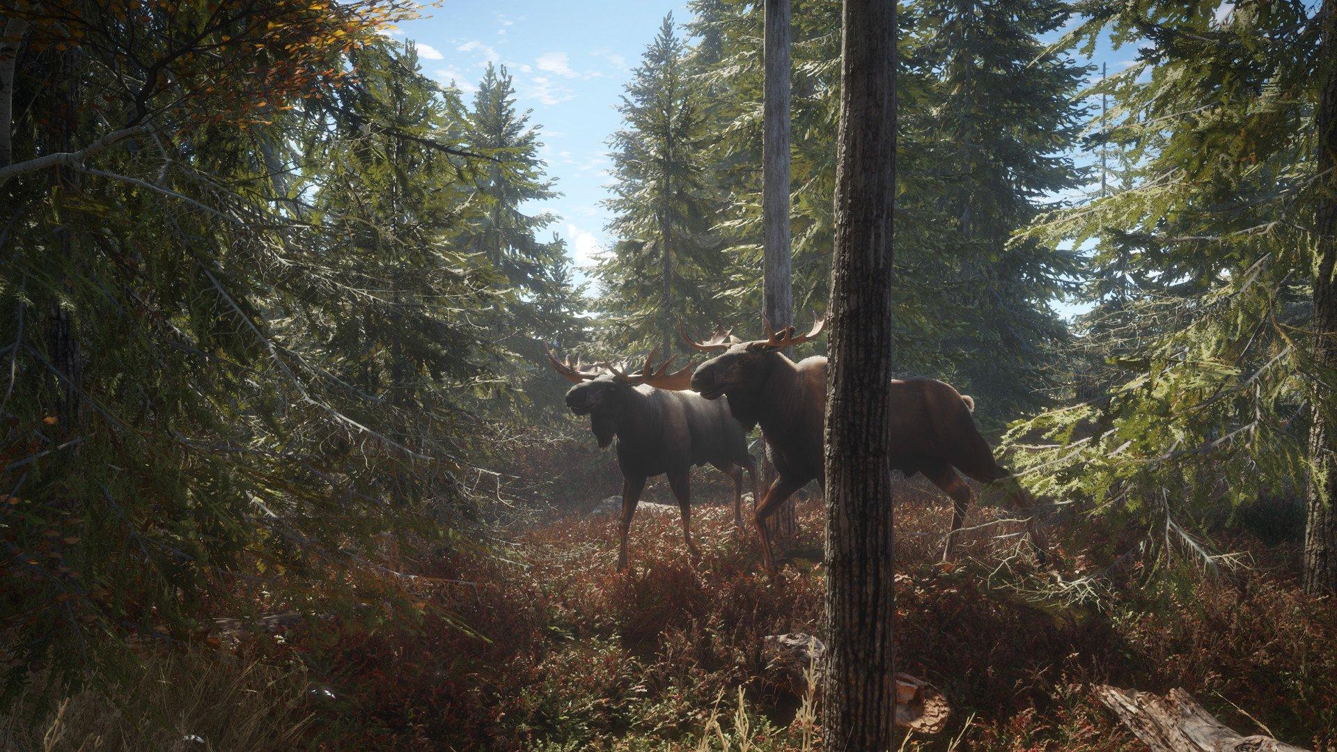 theHunter Call of the Wild 21