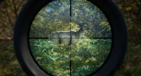 theHunter Call of the Wild 1
